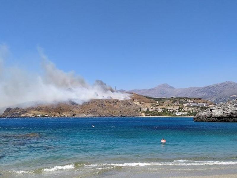 Φωτιά Πλακιάς (Goodnet.gr)