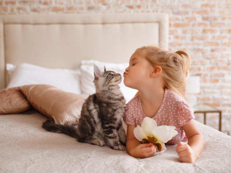 κοριτσάκι με γάτα