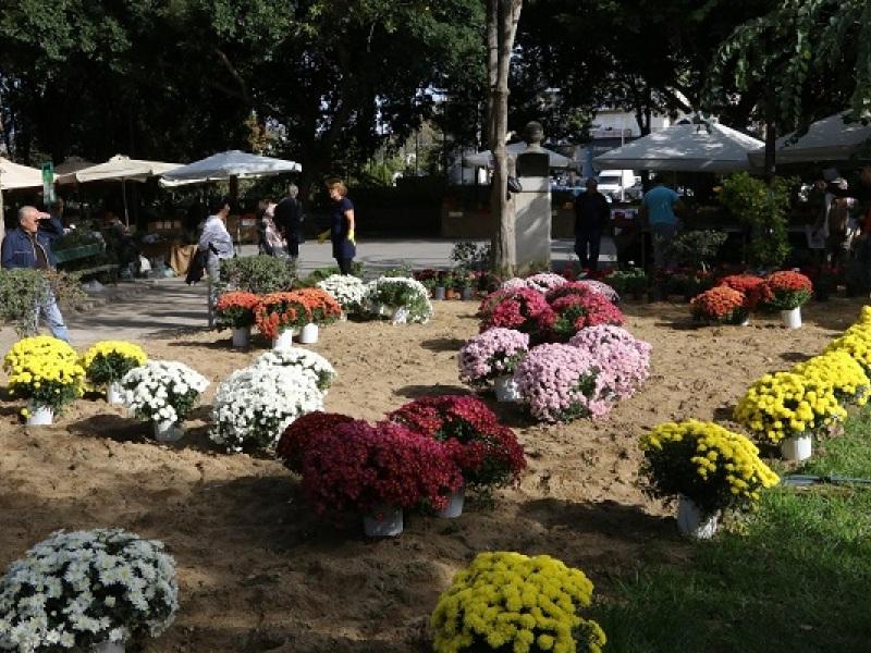 Παρκο Γεωργιαδη