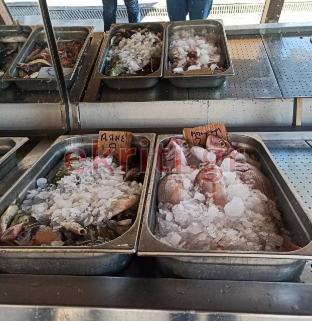 Φρέσκα ψάρια στην Ιχθυόσκαλα