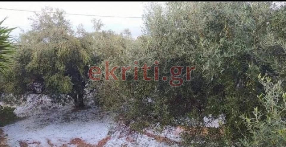 Δήμος Χερσονήσου: Το χαλάζι στρωμένο κάτω από τα δέντρα