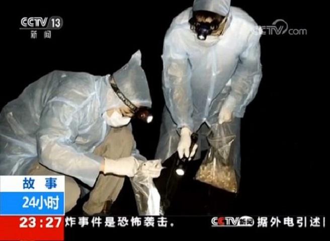 Επιστήμονες στην Ουχάν παραδέχονται ότι τους είχαν δαγκώσει νυχτερίδες με κοροναϊό