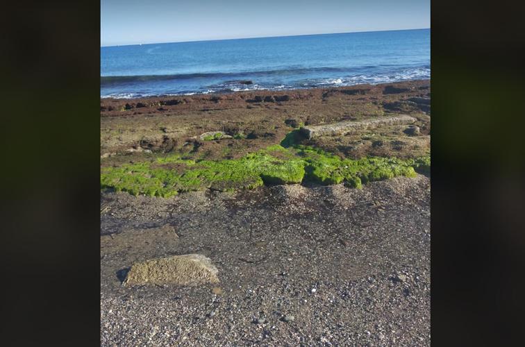 Η θάλασσα τραβήχτηκε μέσα τουλάχιστον 8 μέτρα (φωτο Athina Gouskou ΜΕΤΕΩΚΡΗΤΕΣ)