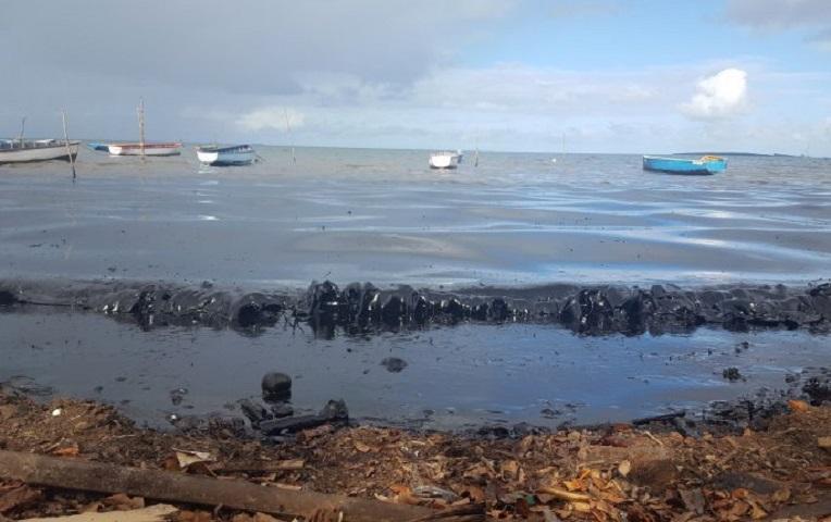 Άγιος Μαυρίκιος - χιλιάδες είδη ζώων κινδυνεύουν να βυθιστούν σε μια θάλασσα πετρελαίου