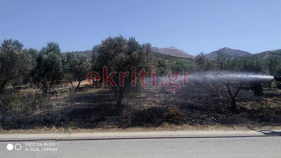Η φωτιά έκαψε έξι συνολικά στρέμμα γης