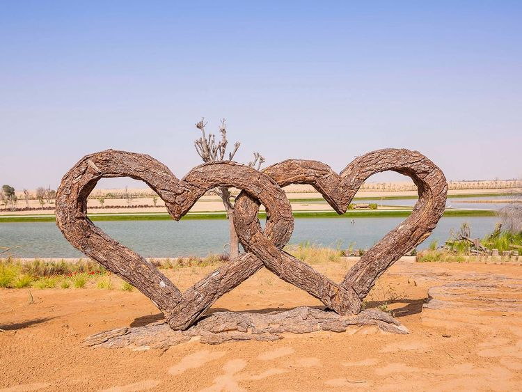 Οι καρδιές στη λίμνη