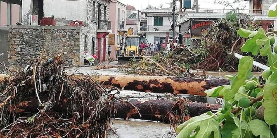 Δέντρα έχουν πέσει