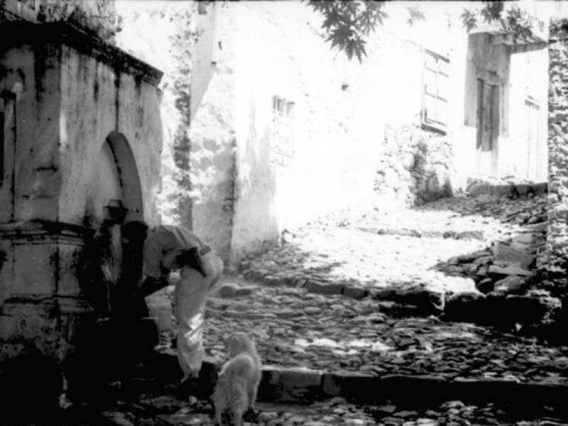 Βιάννος, Ιούλιος 1943